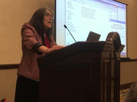 LCWR member Imna Cuesta, CMS leads a regional gathering of delegates
